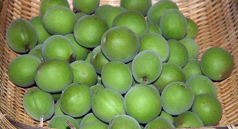 Unripe ume fruit